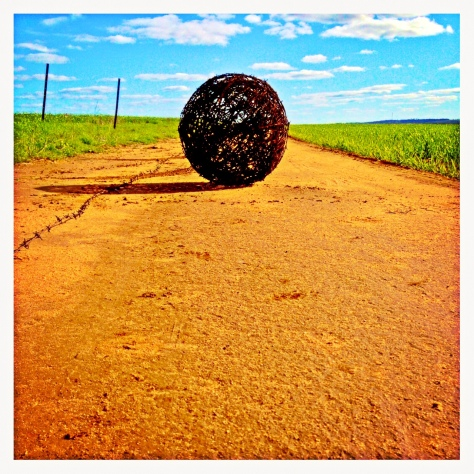 Glorious day was had today, kids and I spent the arvo out in paddock 13/14.  Them playing, me making #barbedwireballs.  I love it when we renew fences!  A truly happy day, I am blessed xxx.